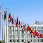 Cofanie i unieważnianie wizy krajowej lub Schengen, a odwołanie się od decyzji
